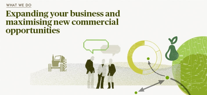What we do - Expanding your business and maximising new commercial opportunities